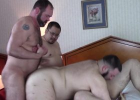 Ass Muching Bears
